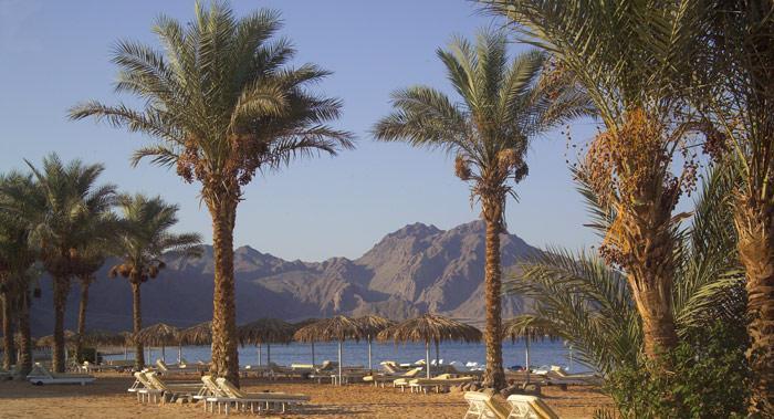 Таба в Египте