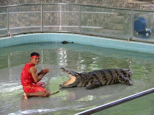 Что посетить в Паттайе