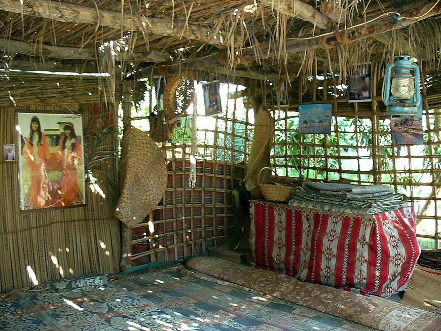 Барасти-хижина из мангровых стволов