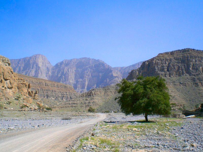 Дорога на Вади Би
