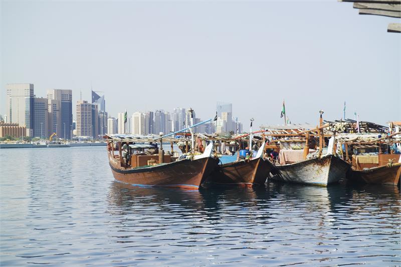 Лодки Доу