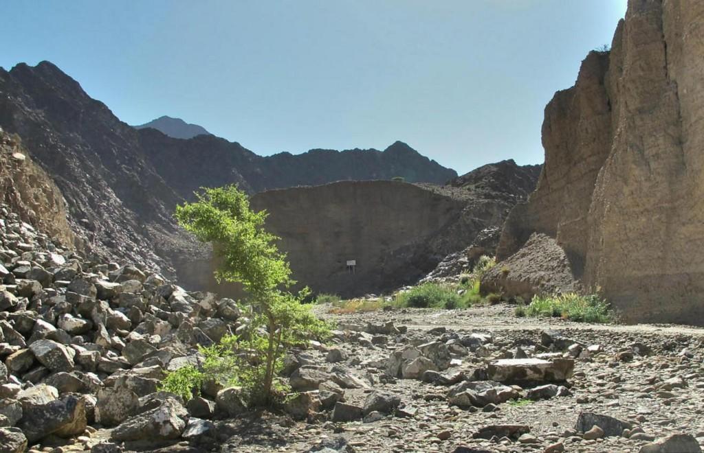 Природа долины Аль-Вария