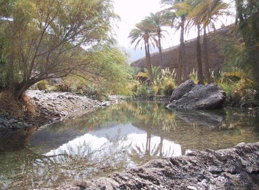 Пророда в Вади Азима