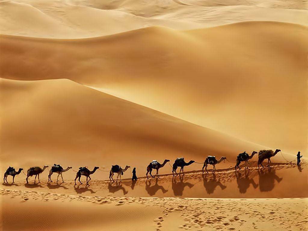 Пустыня. ОАЭ